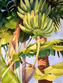 1. Bananas Over Key West, Watercolor, 30x22, $2100