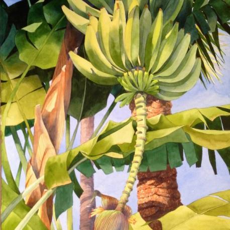 1. Bananas Over Key West, Watercolor, 30x22, $2100