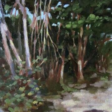 12. Gumbo Limbo, Oil on canvas $900