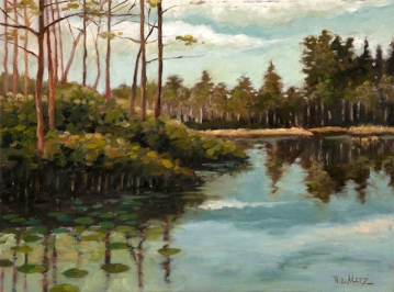 14. Apoxee Park, Oil on canvas,12x16 $900