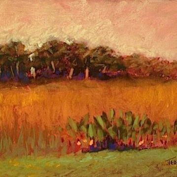 34. Loxahatchee Marsh, Pastel, 8x12, $500