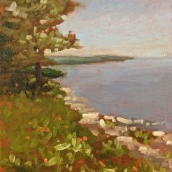 Chebeague Island, Maine: August 9 - 15, 2015
