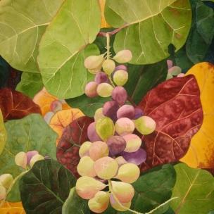 6. Sea Grapes, Watercolor, 30x22 $2100