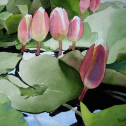 9. Lillly Pond, Watercolor, SOLD
